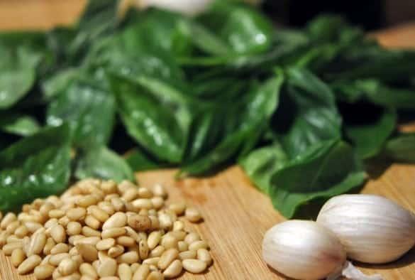 Fresh basil, pine nuts and garlic for pesto