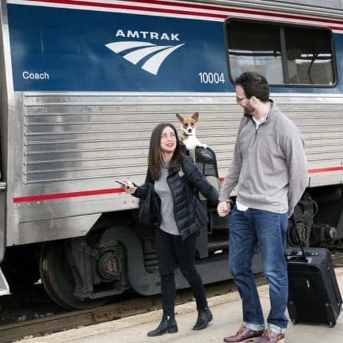 You can now travel with your pet on Amtrak. Certain rules and restrictions apply.