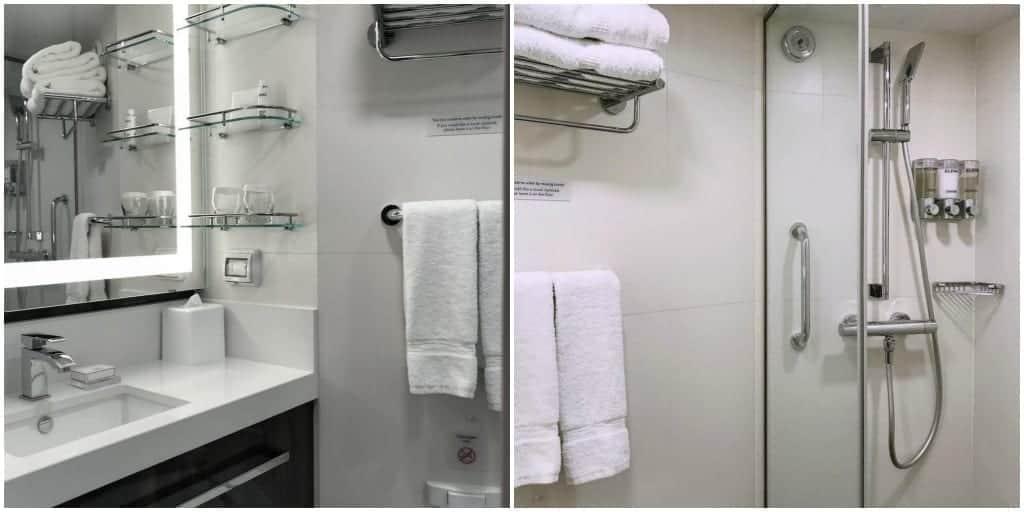 Nieuw Statendam bathroom.