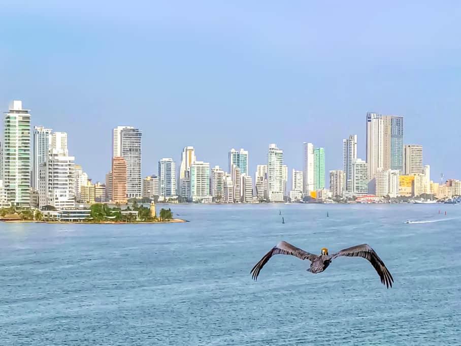 Panama City skyline on a Panama Canal cruise.